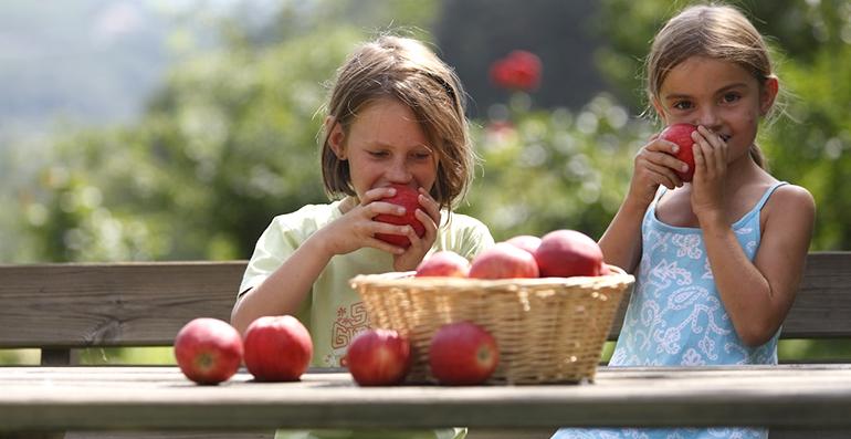 manzanas-valvenosta-frutas-infancia