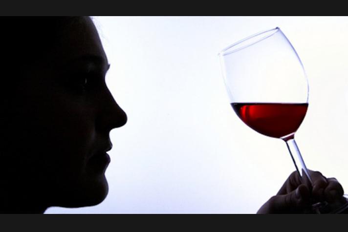 Cata magistral vinos