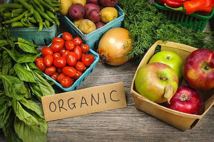 Seminario sobre comida orgánica