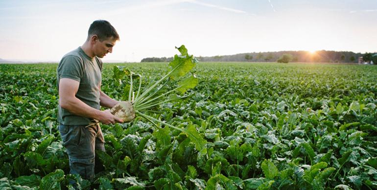 El Covid-19 aumenta el interés de los consumidores por el bienestar y los productos ecológicos
