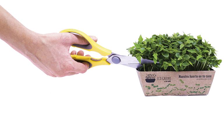 eco-greens-minibrotes-ecologicos-can-garus-gastronomia
