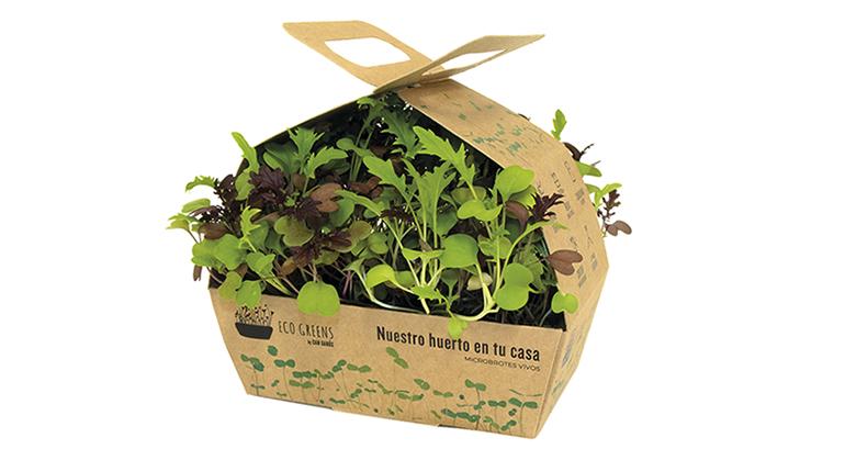 Eco Greens: microbrotes distribuidos en mini huertos, que mantienen el máximo de frescura y propiedades nutricionales