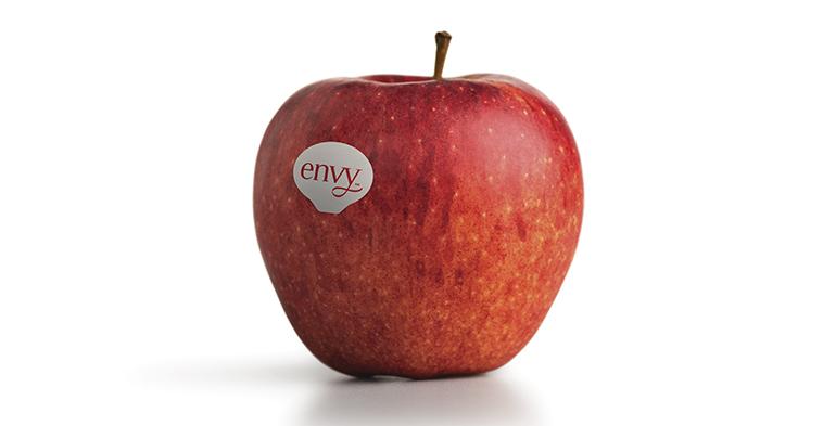 Arranca la campaña de la manzana Envy con muy buenas perspectivas