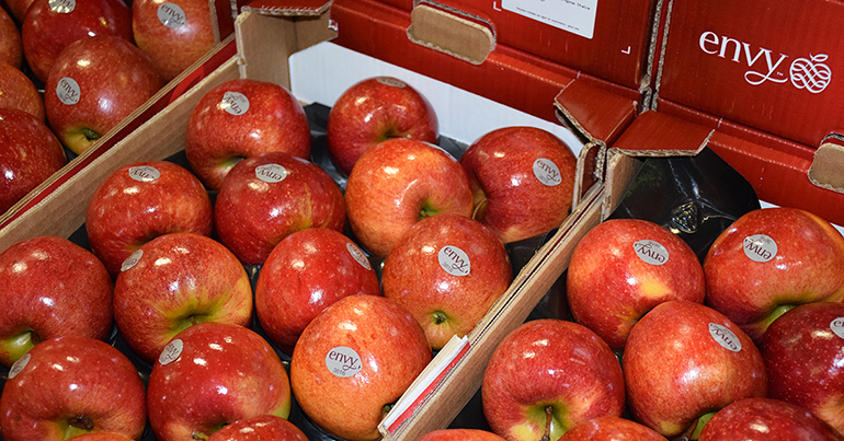 Envy, la manzana roja, crujiente y dulce, vuelve al lineal en España