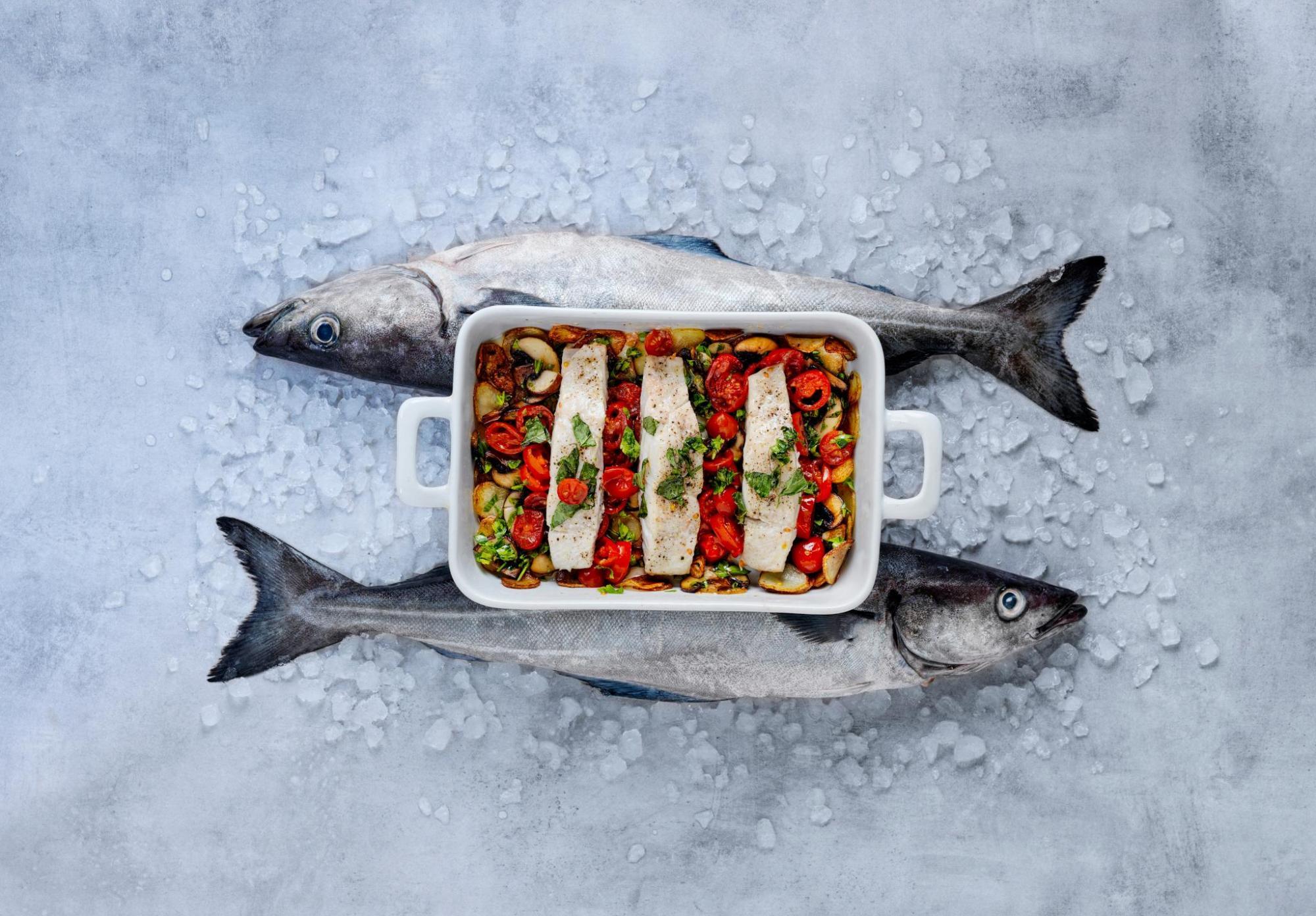 Arranca la temporada del fogonero noruego: un pescado blanco con excelente relación sabor-calidad-precio