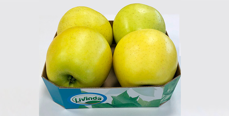 livinda-formato-barqueta-manzanas