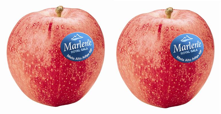 marlene-royal-gala