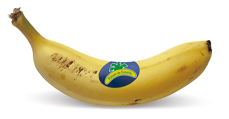 platano-canarias-lineal-IGP