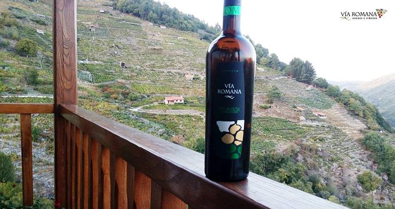 Via Romana Godello 2018 se alza con el oro en el Mundial de vinos extremos 2019
