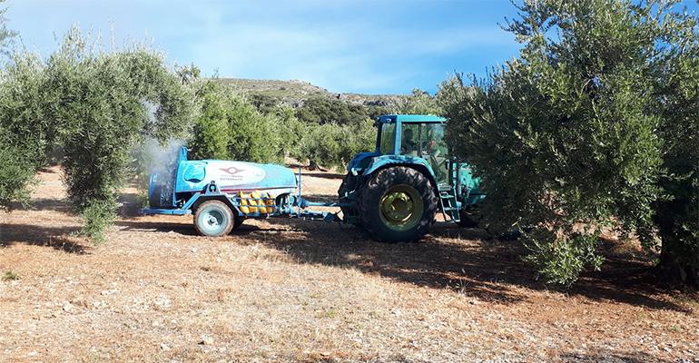 Oilox permite obtener información sobre la calidad del aceite de oliva virgen extra y su contenido en polifenoles