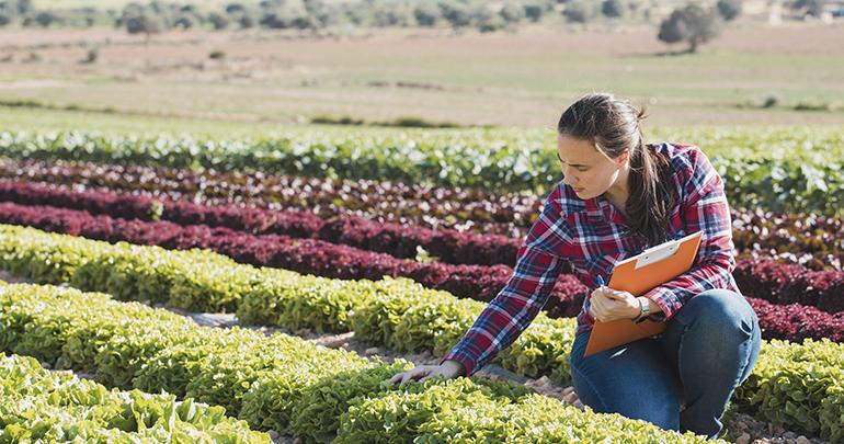 España ocupa el primer lugar de superficie agrícola ecológica de la UE