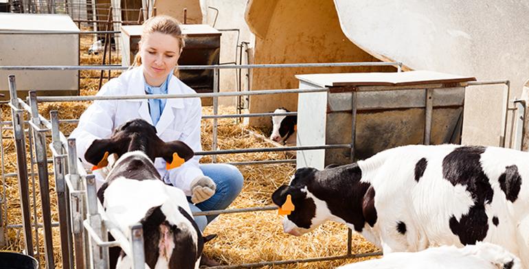 bienestar-animal-ministerio-alimentacion-centro-referencia