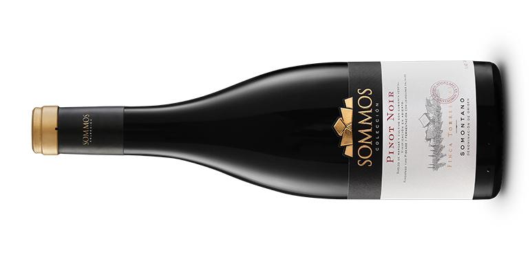 Sommos Colección Pinot Noir, un vino delicado, ligero y profundamente seductor, DO Somontano