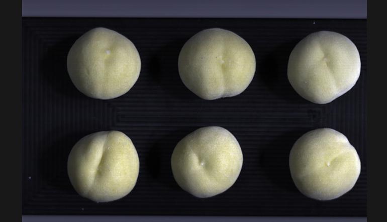 cnta-camara-hiperespectral-calidad-fruta-gestion-stock