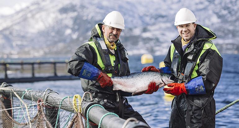 El Consejo de Productos del Mar de Noruega se une al agradecimiento mundial a los #HeroesDeLaAlimentacion