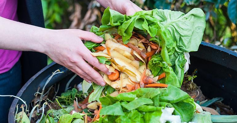 desperdicio-alimentos-ideas
