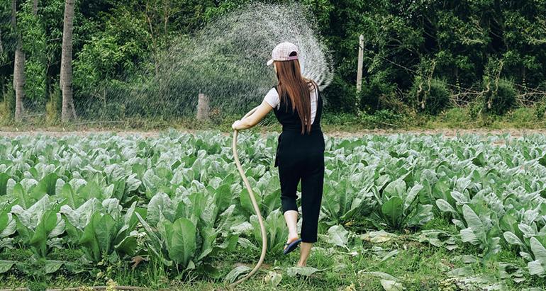 EIT Food escoge 10 proyectos de mujeres emprendedoras que ayuden a acabar con la brecha en el sector agroalimentario