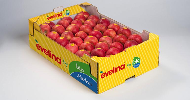 Se abre la temporada de la manzana Evelina Bio, en una campaña que irá de la mano de Bio Marlene