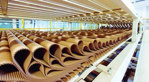 89 fábricas de cartón mantienen su actividad para garantizar el abastecimiento alimentario y farmacéutico