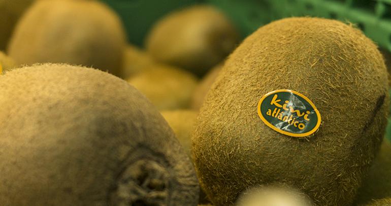 kiwi-atlantico-fruit-attraction