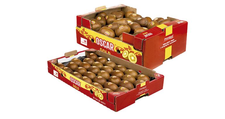 Oscar Gold, un kiwi de pulpa amarilla, más dulce y sostenible