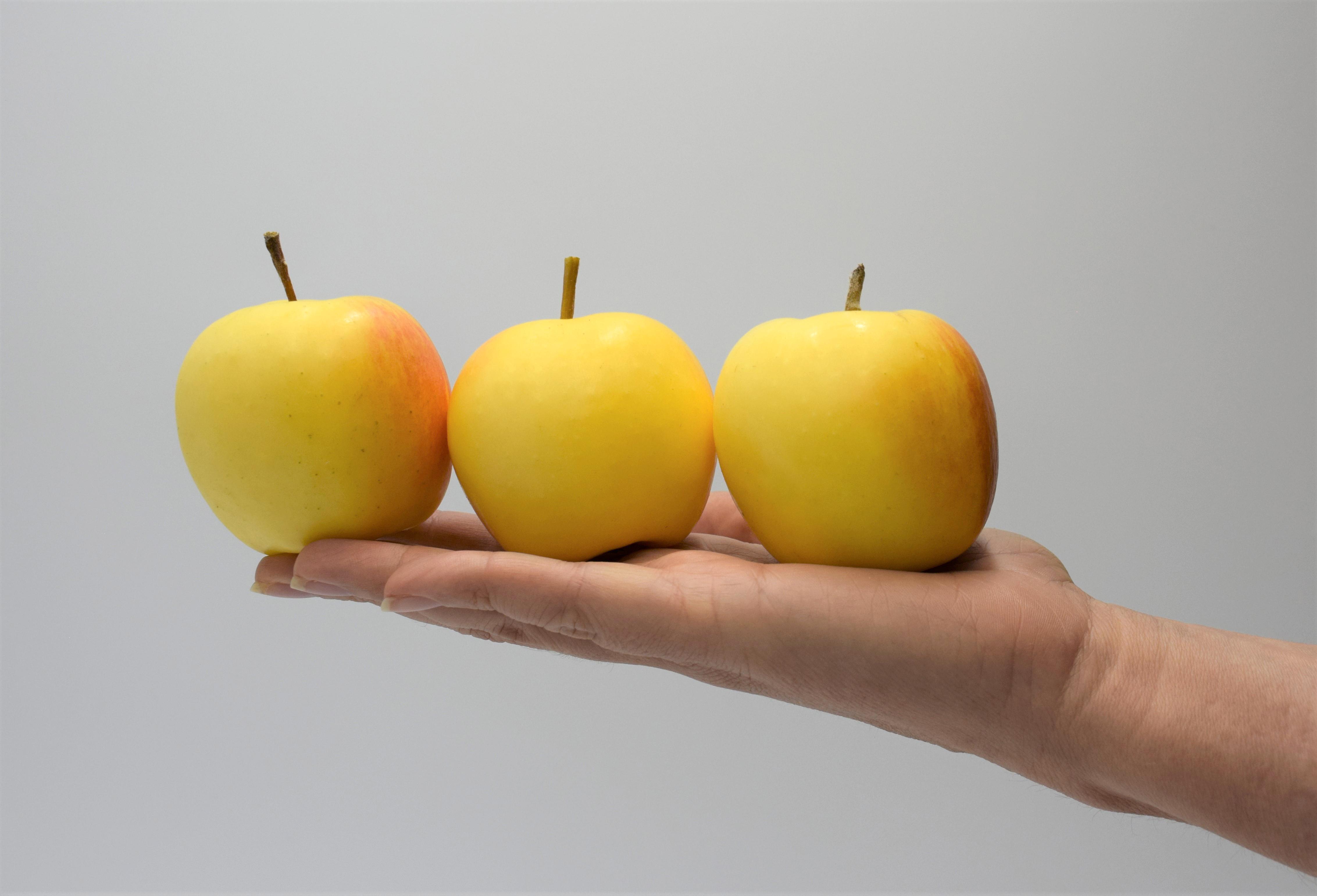Manzanas snack, nuevo proyecto de Rivoira, VI.P y VOG