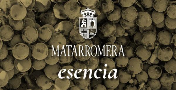 Esencia Matarromera, un proyecto que transformará por completo a esta bodega de Ribera del Duero
