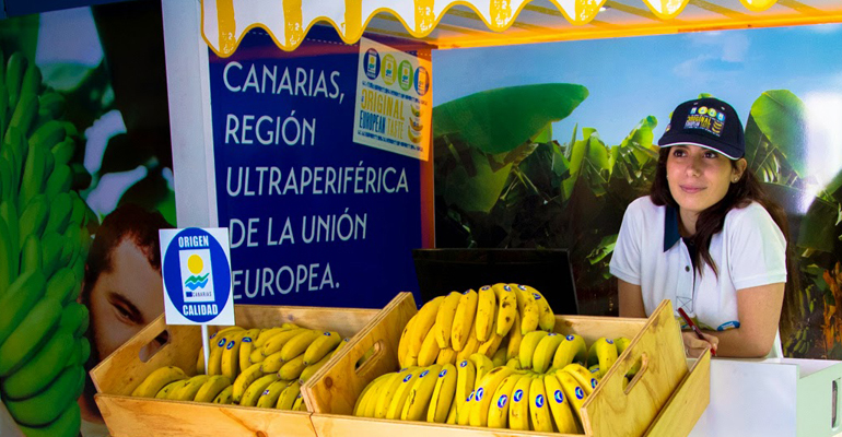 Plátano de Canarias encara con optimismo la recta final de 2019