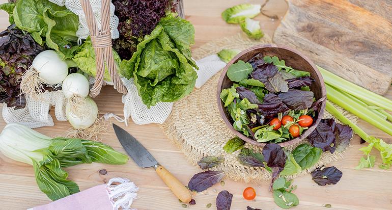 primaflor-ensaladas-greenlovers-consumo