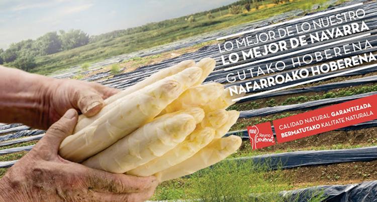 reyno-gourmet-imagen-esparragos