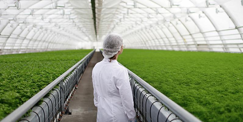 Nuevos paradigmas de Seguridad Alimentaria: salud, sostenibilidad, bienestar animal y tendencias post Covid-19