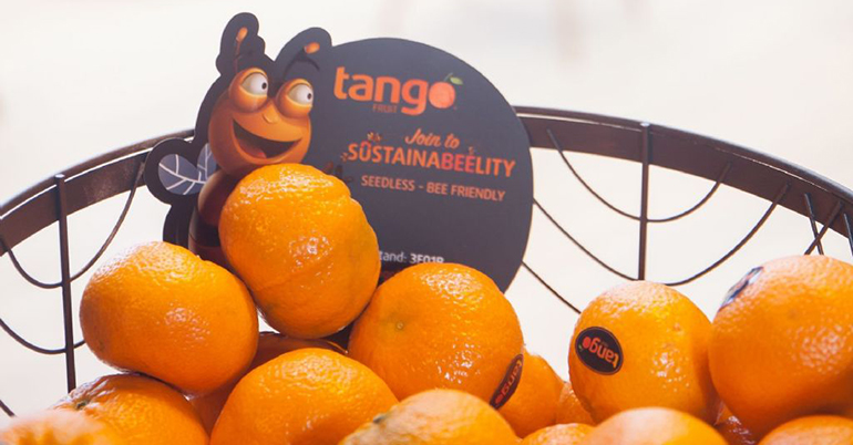 Las mandarinas Tango aspiran a llegar a las cadenas de distribución 10 meses al año