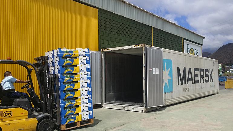 C mo mejorar el transporte para la conservaci n del for Empresas de transporte en tenerife