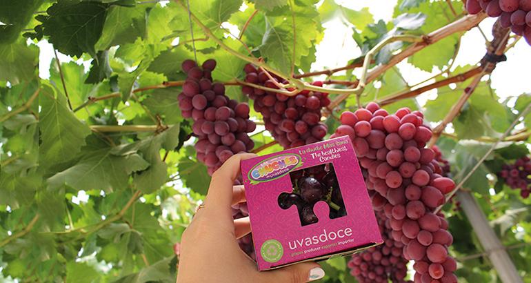 Fruit Attraction: Uvasdoce regresa a feria para mostrar sus últimas novedades