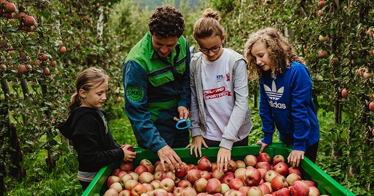 Un servicio de primera desde el Paraíso de las Manzanas