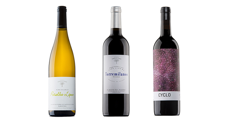 Pack Resistencia de vinos DO Ribera del Duero y DO Castilla y León